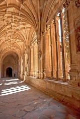 depositphotos_29307371-stock-photo-cloister-of-salamanca (1).jpg