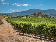 chianti-wijn-proeven-tips-toscane.jpg